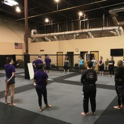 Self Defense Phoenix MMA BJJ Gym