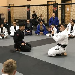 Phoenix MMA BJJ Training