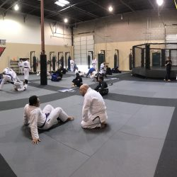 Phoenix MMA BJJ Classes