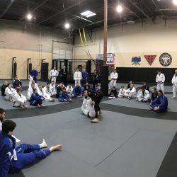 Brazilian Jiu JItsu Class Session