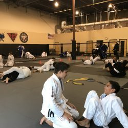 Jiu Jitsu Training Phoenix