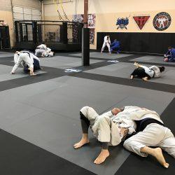 Phoenix Brazilian Jiu Jitsu Training