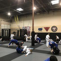 Jiu Jitsu Training Phoenix MMA BJJ