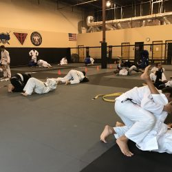 Phoenix Area Jiu Jitsu Training