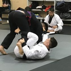 Professor Rafa Brazilian Jiu Jitsu Training