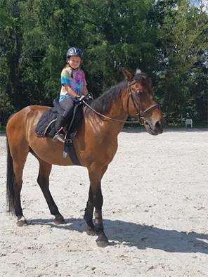 Horseback Riding Lessons Lake Worth Horseback Riding