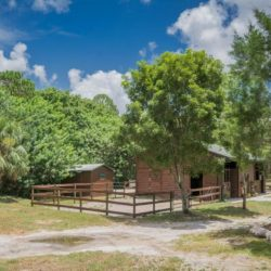 A view of our horse stables - Pink Flamingo Stables