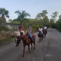 A group riding horses on a trail - Pink Flamingo Stables