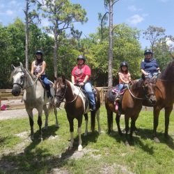 A group of four setting out on a trail ride - Pink Flamingo Stables