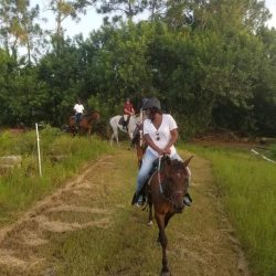 Trail riding through a field - Pink Flamingo Stables