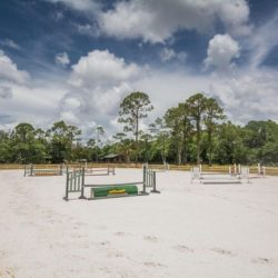 Our riding lesson arena with jumps - Pink Flamingo Stables