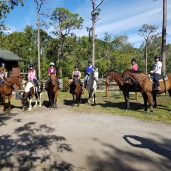 A group of horses and riders before a trail ride - Pink Flamingo Stables