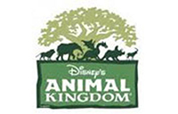 Animal Kingdom company logo