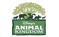 Animal Kingdom company logo