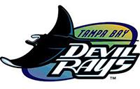 Tampa Bay Devil Rays company logo
