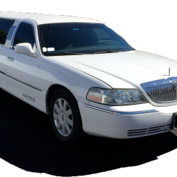 14 Passenger Stretch Limo