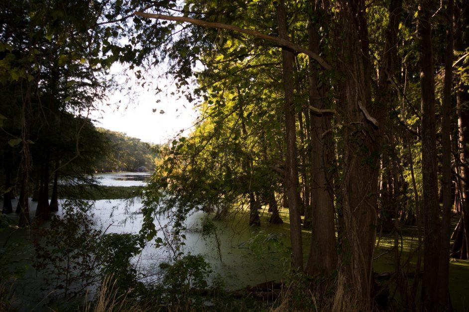 The Preserve offers pristine property for sale!
