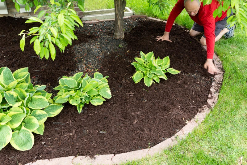 Let us mulch your landscape!