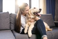Training Your Dog Not to Bark