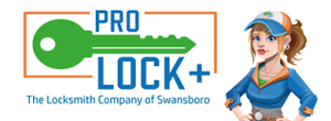 Professional Locksmith Plus, LLC