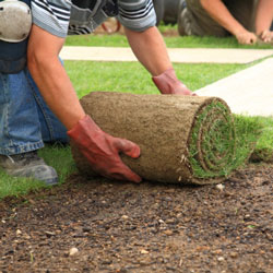 sod installation services calgary