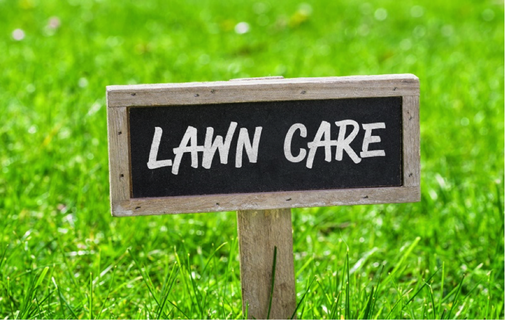 4-steps-your-Calgary-lawn-care-provider-should-take-to-benefit-your-lawn-landscaping-calgary-5b2a9ea069771