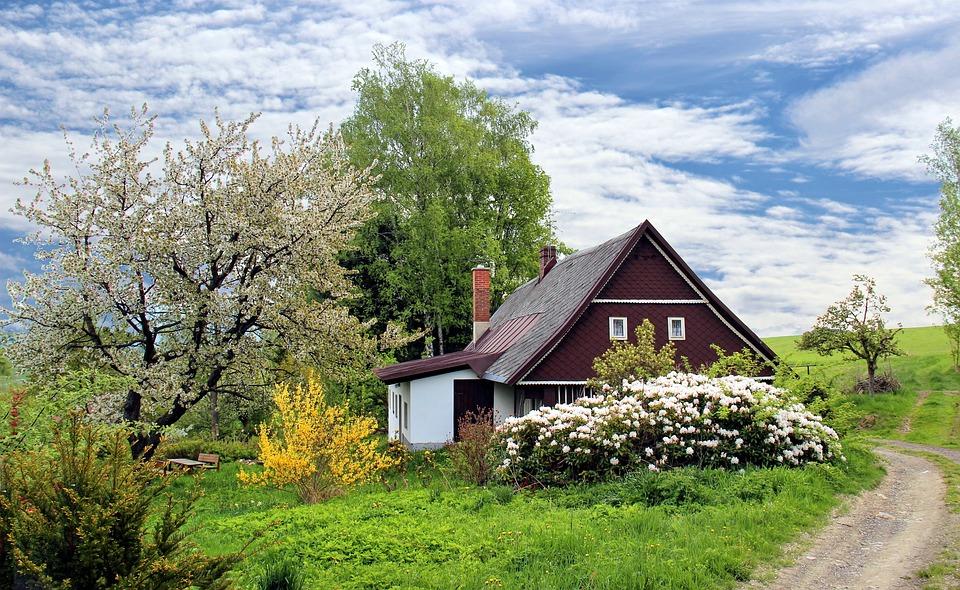 landscaping-calgary-spring-5ca6469576ecd