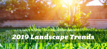 2019-landscaping-trends-calgary-5cfe6ac025b01