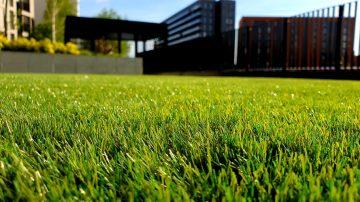calgary lawn care landscape