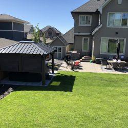 calgary backyard design grass