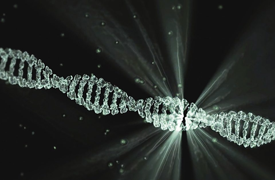 picture of a DNA double helix in black and white color. Photo courtesy of Pixabay.
