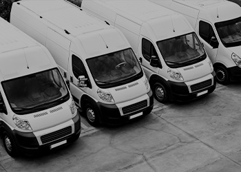 A line up of white vans.