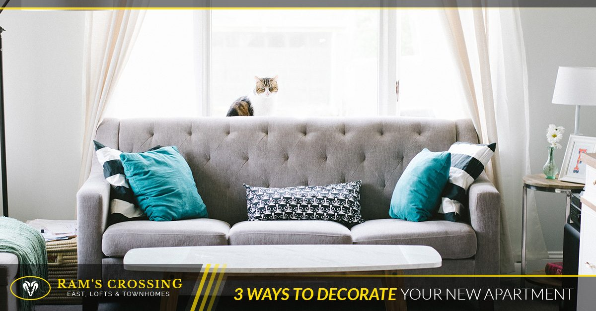 3 Ways to Decorate Your New Apartment