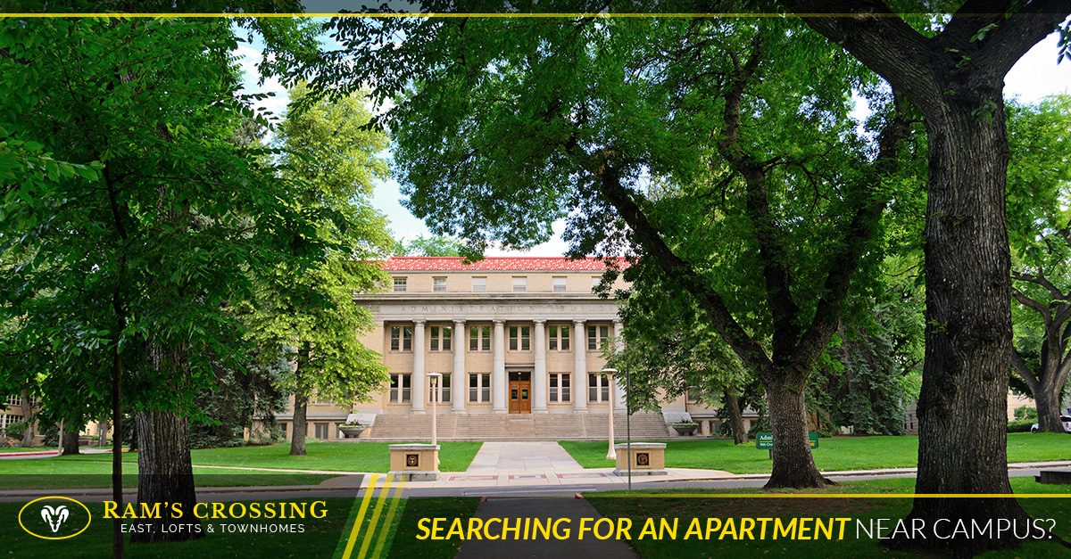 Searching for an apartment near CSU campus