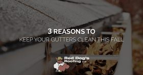 3 Reasons to Clean Your Gutters