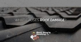 What Causes Roof Damage?