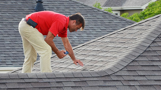 Roofer Inspects Shingle Roofing