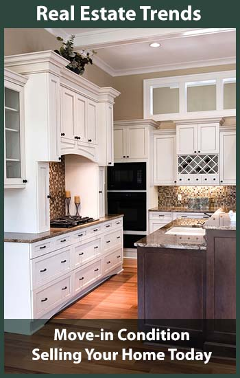 expensive luxury kitchen in white and dark wood