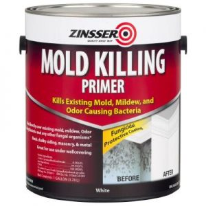 Repairs & Paints Mold Killing Primer