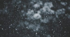 Snow falling against a blurry backdrop of trees.