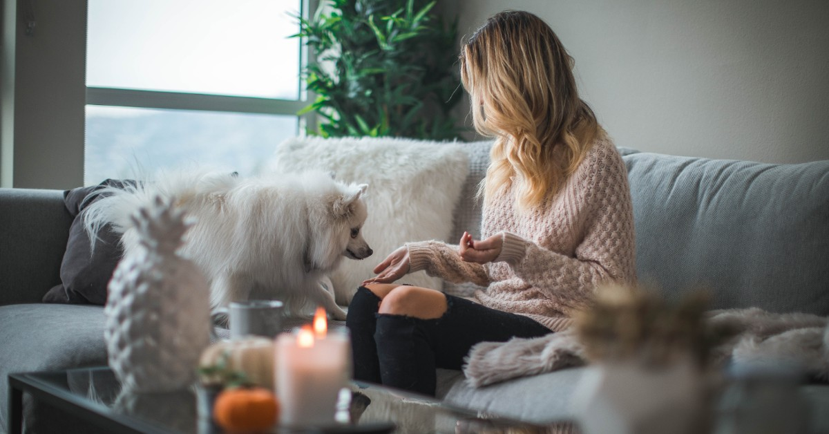 Woman wearing sweater sitting on couch with her little dog.