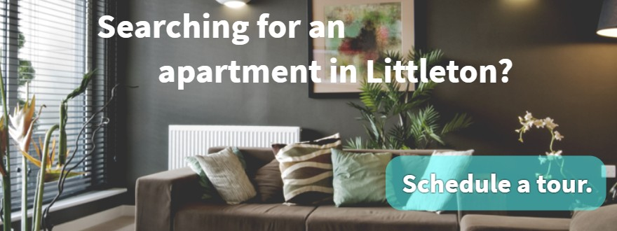 Enjoy a Quiet Nook for Reading & 1-Bedroom Apartments Littleton: Use Your Loft Space More Effectively