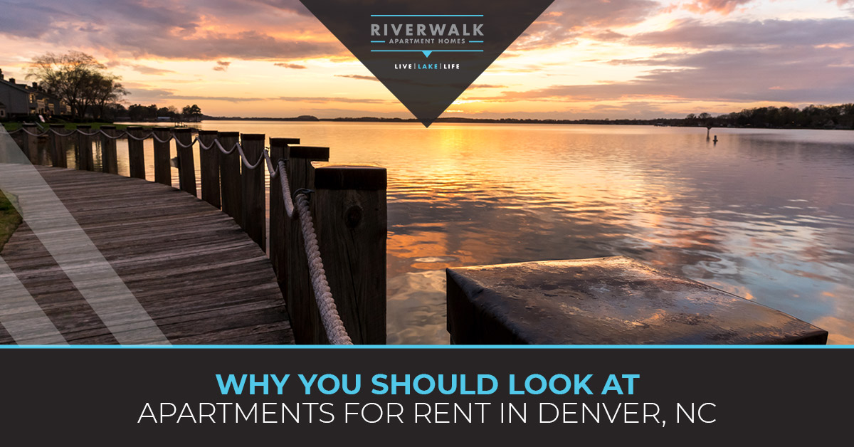 """Why you should look at apartments for rent in Denver"" blog banner."