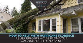 """How to help with hurricane florence relief efforts."" Blog banner."