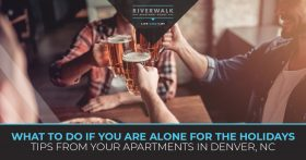 """What do do if you are alone for the holidays. Tips from your apartment in Denver."""