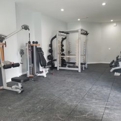 A selection of weight lifting equipment.