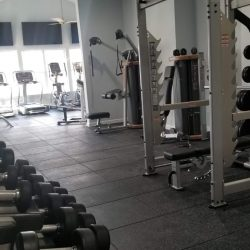 A selection of treadmills, weight lifting equipment and other exercise equipments.
