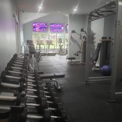 A large selection of weights and other exercise equipment.