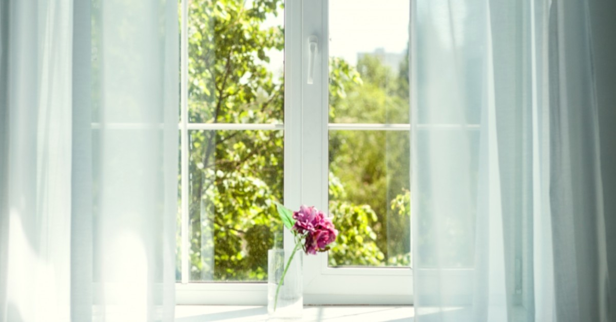 A window looking out at trees is framed by gauzy white curtains.
