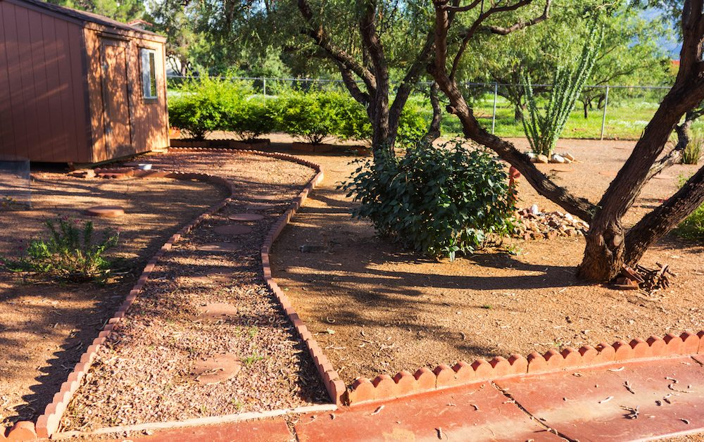 Arizona backyard with trees, cacti and a path to a house - Robins Plumbing Inc.